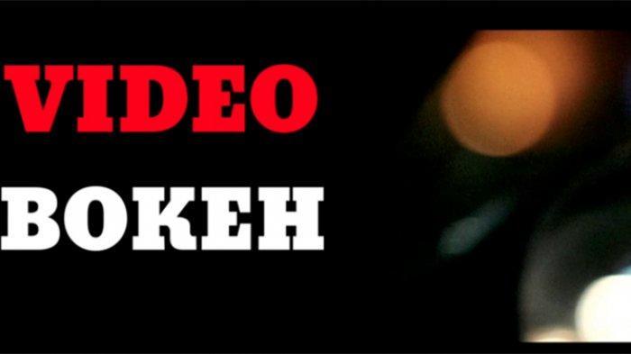 Download Link Apps Video Bokeh Museum Full